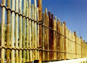 African Fence
